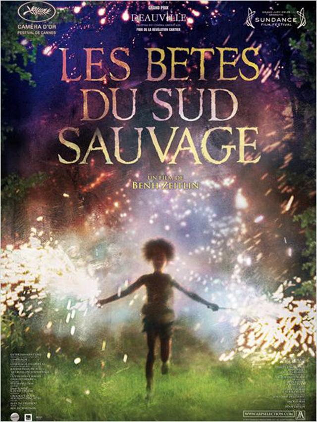 les-betes-du-sud-sauvage-cinema-0