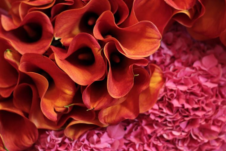 art-floral-04