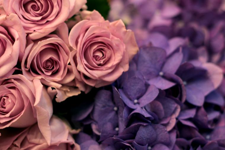 art-floral-05