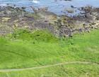 giants-causeway-irlande