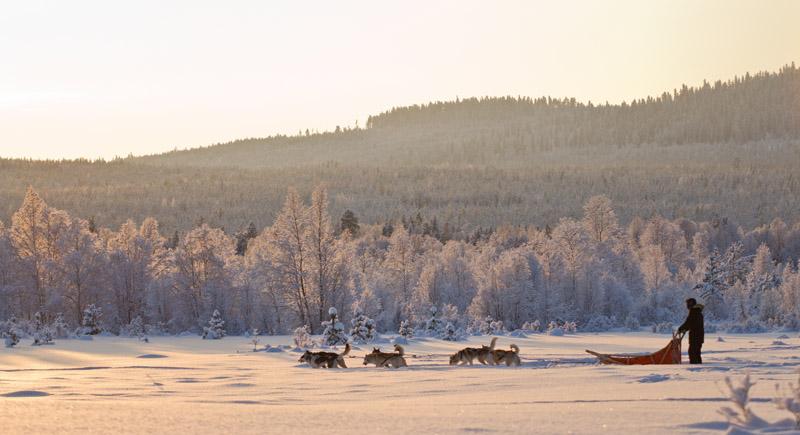 borealis_laponie